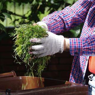 GSAK Abfall Bioabfall