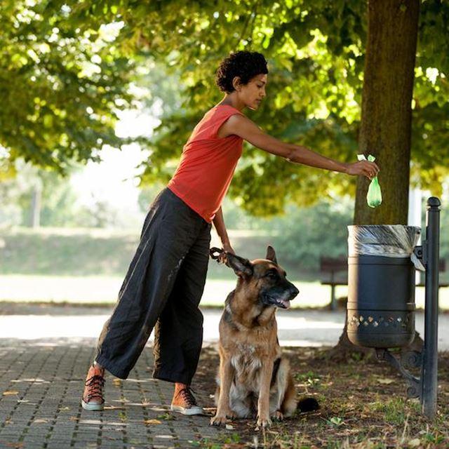 GSAK Krefeld Hundekotbeutelstationen