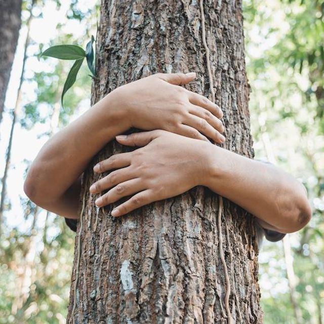 GSAK Unternehmen Engagement Umwelt